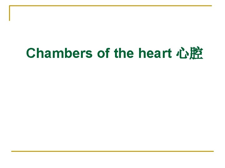 Chambers of the heart 心腔