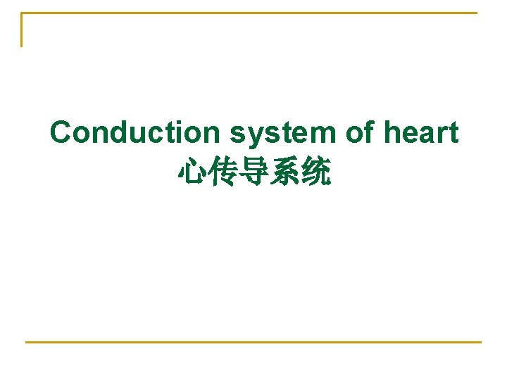 Conduction system of heart 心传导系统