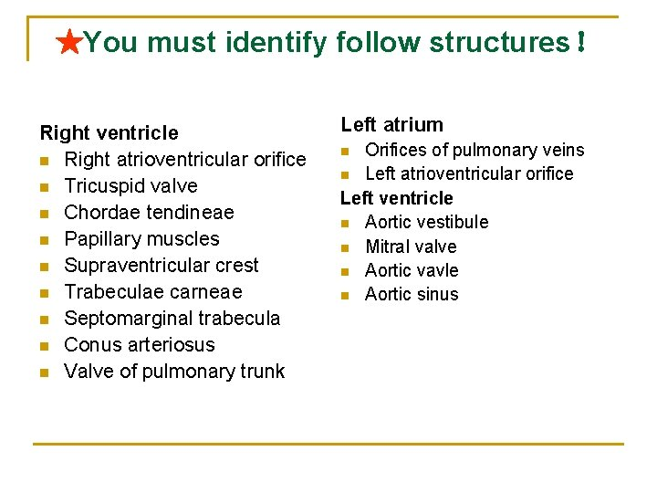 ★You must identify follow structures! Right ventricle n Right atrioventricular orifice n Tricuspid valve