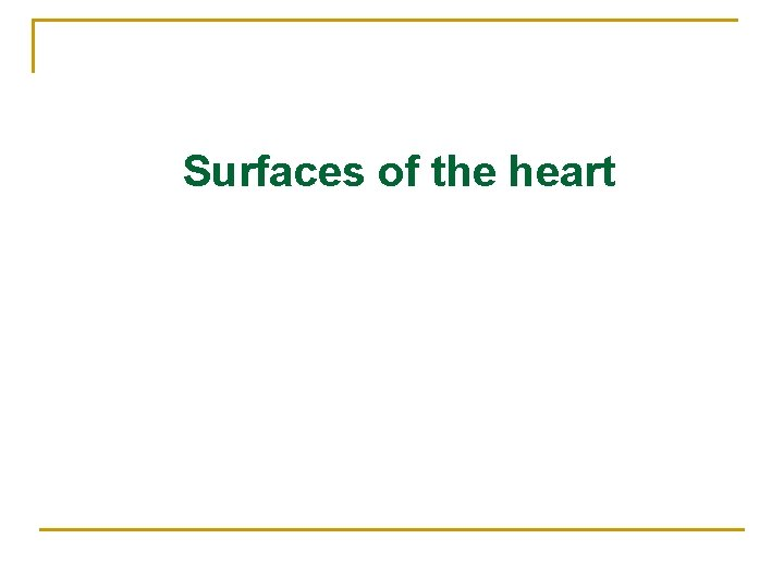 Surfaces of the heart