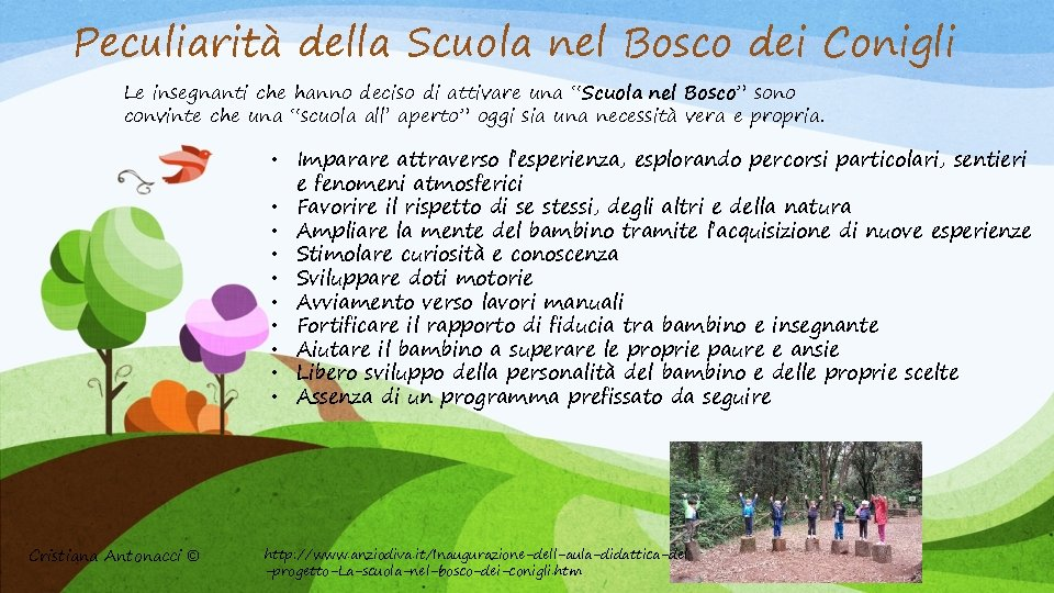 Peculiarità della Scuola nel Bosco dei Conigli Le insegnanti che hanno deciso di attivare