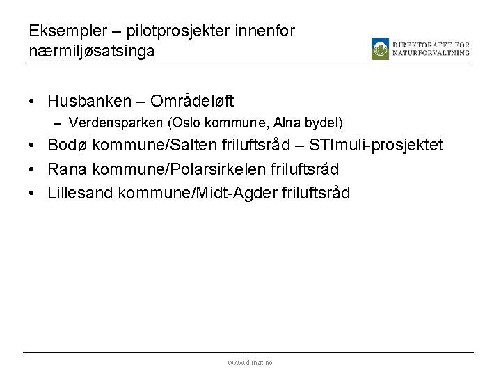Eksempler – pilotprosjekter innenfor nærmiljøsatsinga • Husbanken – Områdeløft – Verdensparken (Oslo kommune, Alna