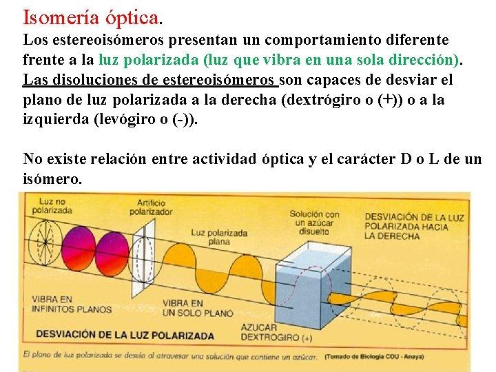 Isomería óptica. Los estereoisómeros presentan un comportamiento diferente frente a la luz polarizada (luz