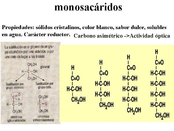 monosacáridos Carbono asimétrico ->Actividad óptica
