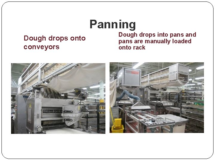 Panning Dough drops onto conveyors Dough drops into pans and pans are manually loaded