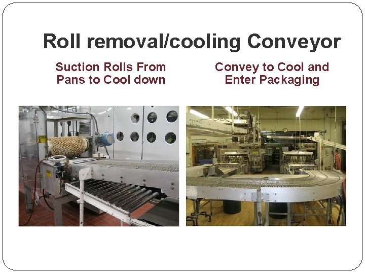 Roll removal/cooling Conveyor Suction Rolls From Pans to Cool down Convey to Cool and