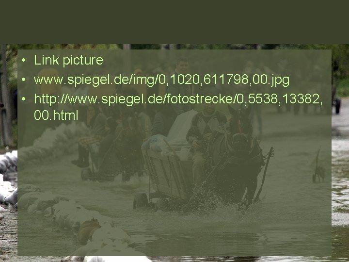 • Link picture • www. spiegel. de/img/0, 1020, 611798, 00. jpg • http: