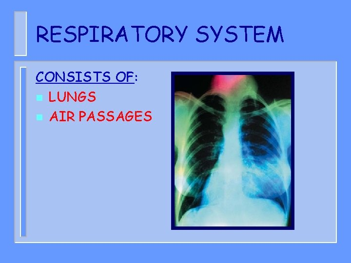 RESPIRATORY SYSTEM CONSISTS OF: n LUNGS n AIR PASSAGES