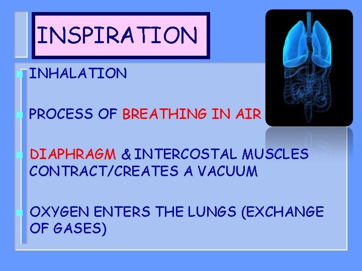 INSPIRATION n INHALATION n PROCESS OF BREATHING IN AIR n n DIAPHRAGM & INTERCOSTAL