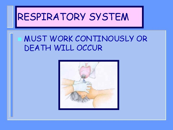 RESPIRATORY SYSTEM n MUST WORK CONTINOUSLY OR DEATH WILL OCCUR