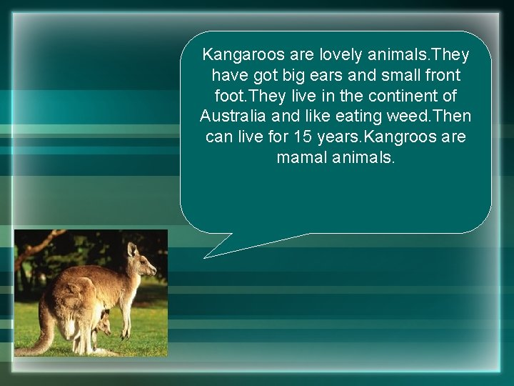 Kangaroos are lovely animals. They have got big ears and small front foot. They