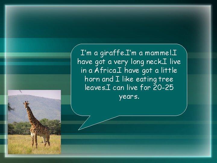 I'm a giraffe. I'm a mammel. I have got a very long neck. I