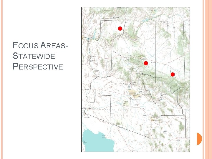 FOCUS AREASSTATEWIDE PERSPECTIVE