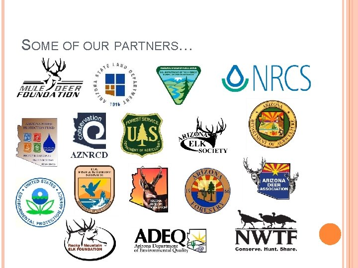 SOME OF OUR PARTNERS…