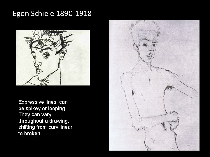 Egon Schiele 1890 -1918 Expressive lines can be spikey or looping They can vary
