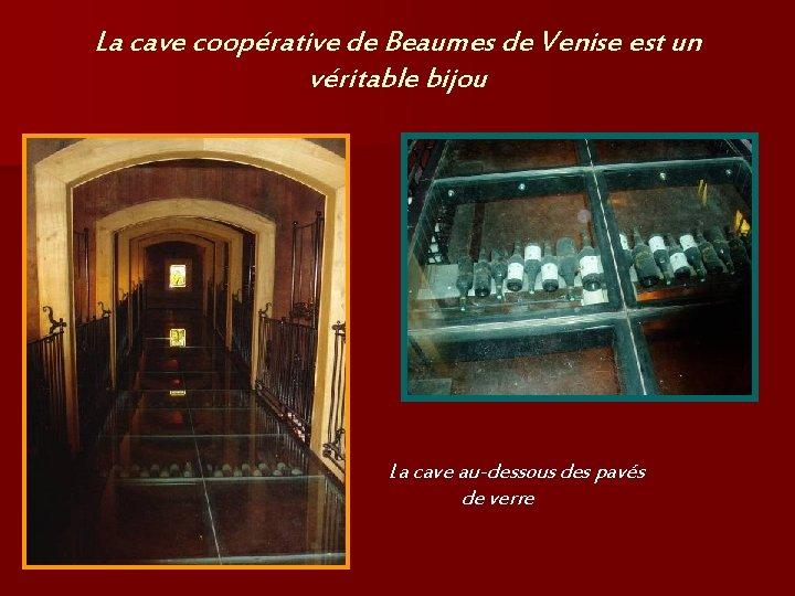 La cave coopérative de Beaumes de Venise est un véritable bijou La cave au-dessous