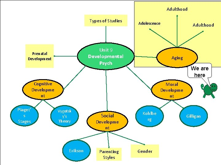 Adulthood Types of Studies Adolescence Unit 9 Developmental Psych Prenatal Development Aging We are
