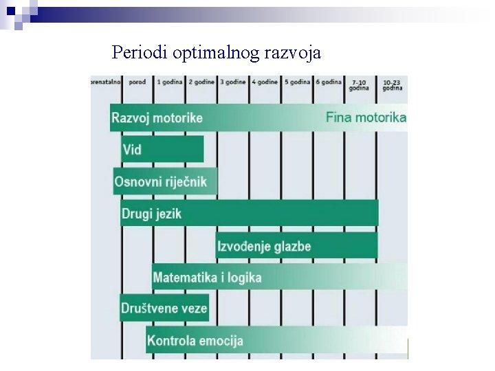 Periodi optimalnog razvoja