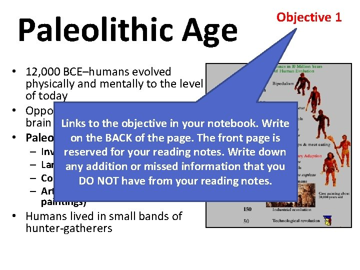 Paleolithic Age Objective 1 • 12, 000 BCE–humans evolved physically and mentally to the