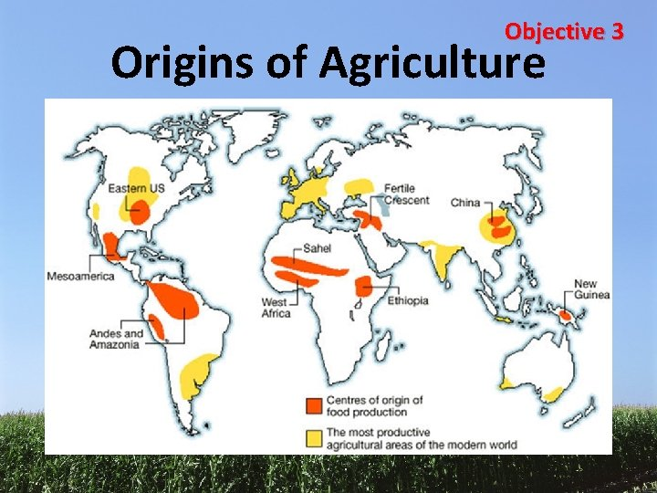 Objective 3 Origins of Agriculture