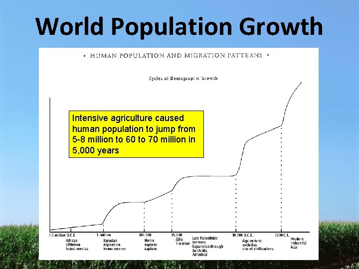 World Population Growth Intensive agriculture caused human population to jump from 5 -8 million
