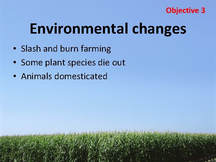 Objective 3 Environmental changes • Slash and burn farming • Some plant species die