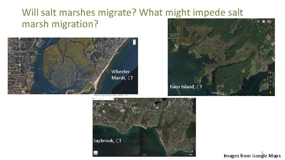 Will salt marshes migrate? What might impede salt marsh migration? Wheeler Marsh, CT Barn