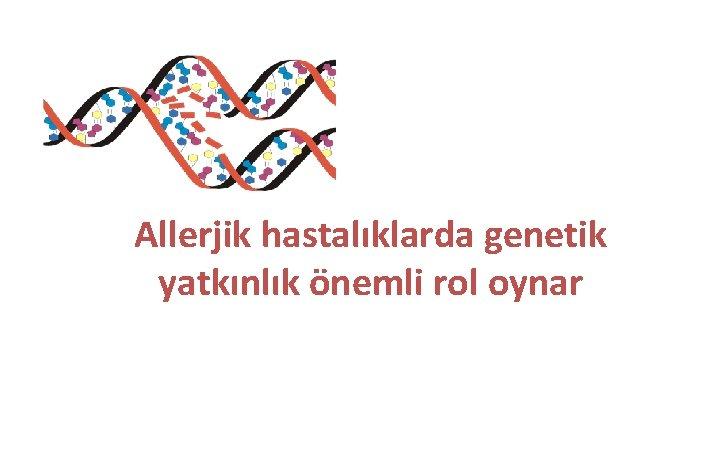 Allerjik hastalıklarda genetik yatkınlık önemli rol oynar
