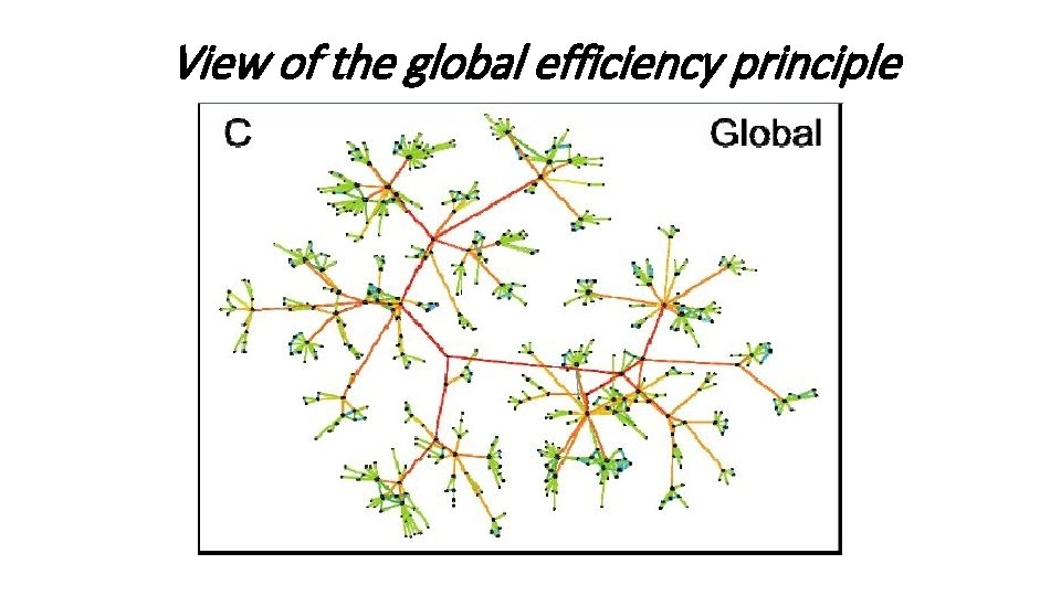 View of the global efficiency principle