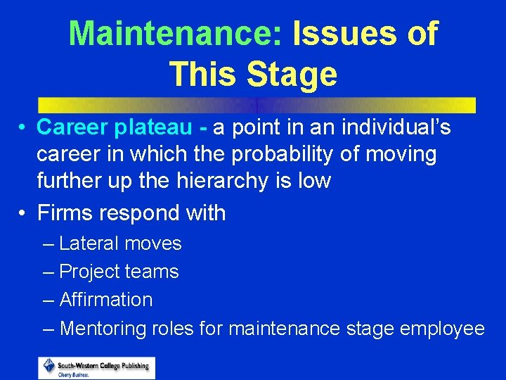 Maintenance: Issues of This Stage • Career plateau - a point in an individual's
