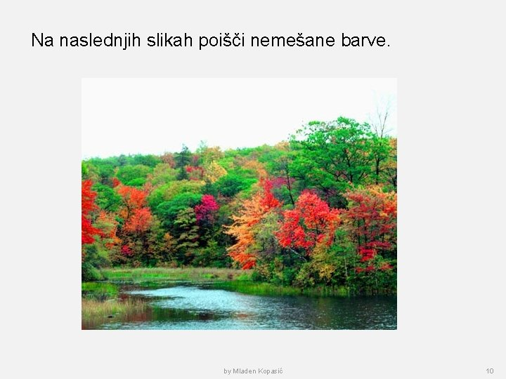 Na naslednjih slikah poišči nemešane barve. by Mladen Kopasić 10