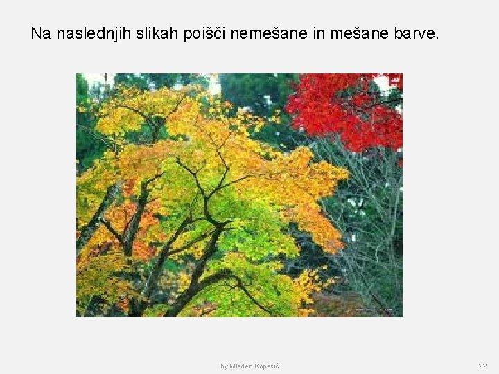 Na naslednjih slikah poišči nemešane in mešane barve. by Mladen Kopasić 22