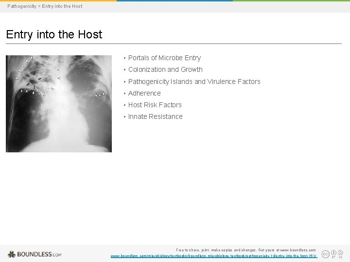 Pathogenicity > Entry into the Host • Portals of Microbe Entry • Colonization and