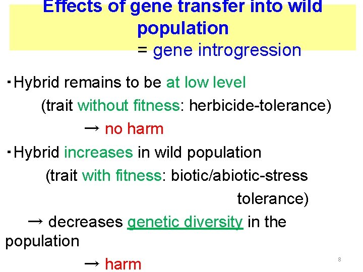 Effects of gene transfer into wild population     = gene introgression ・Hybrid remains to be