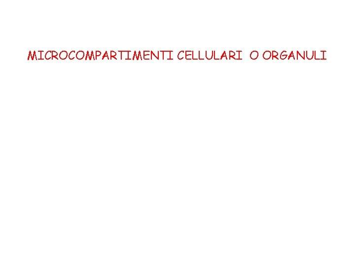 MICROCOMPARTIMENTI CELLULARI O ORGANULI