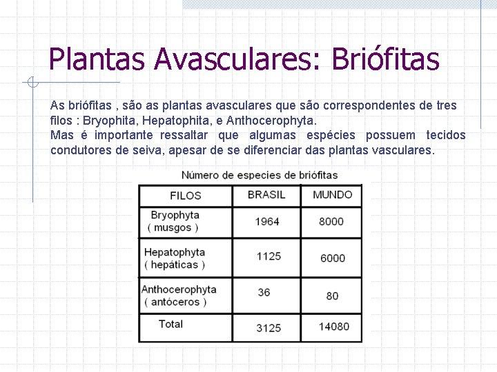 Plantas Avasculares: Briófitas As briófitas , são as plantas avasculares que são correspondentes de