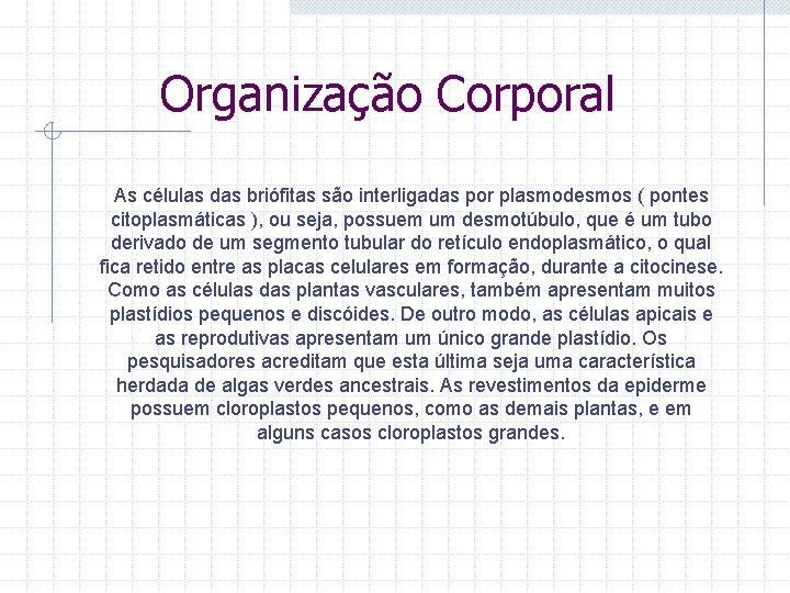 Organização Corporal As células das briófitas são interligadas por plasmodesmos ( pontes citoplasmáticas ),