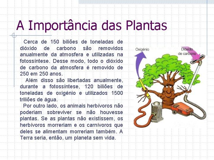 A Importância das Plantas Cerca de 150 biliões de toneladas de dióxido de carbono