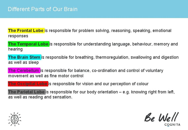 Different Parts of Our Brain The Frontal Lobe is responsible for problem solving, reasoning,