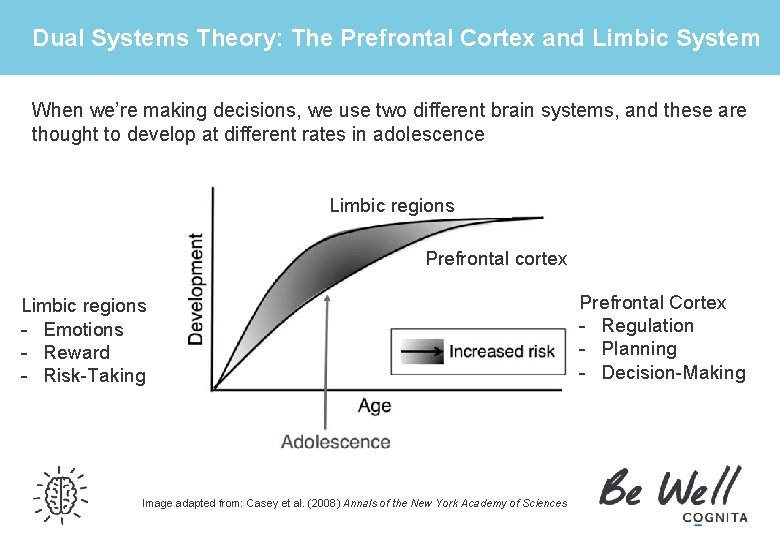 Dual Systems Theory: The Prefrontal Cortex and Limbic System When we're making decisions, we