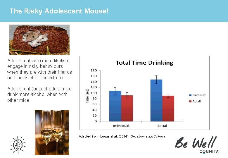 The Risky Adolescent Mouse! Adolescents are more likely to engage in risky behaviours when
