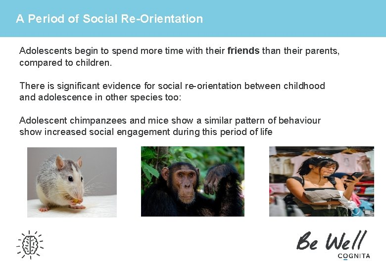 A Period of Social Re-Orientation Adolescents begin to spend more time with their friends