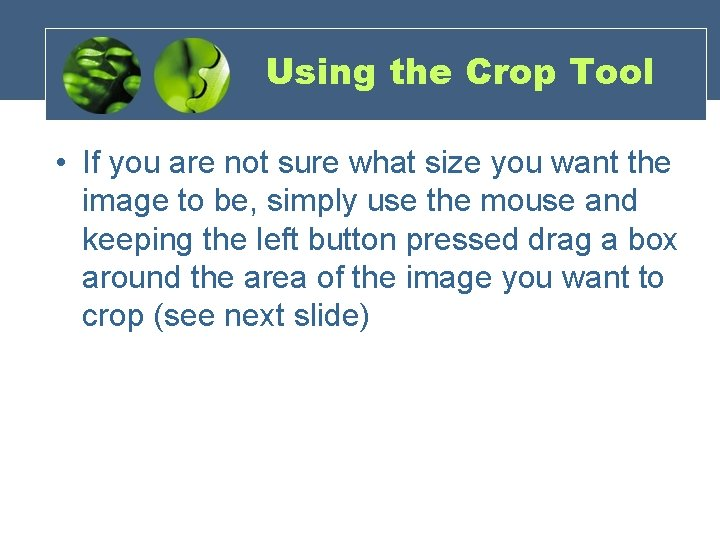 Using the Crop Tool • If you are not sure what size you want