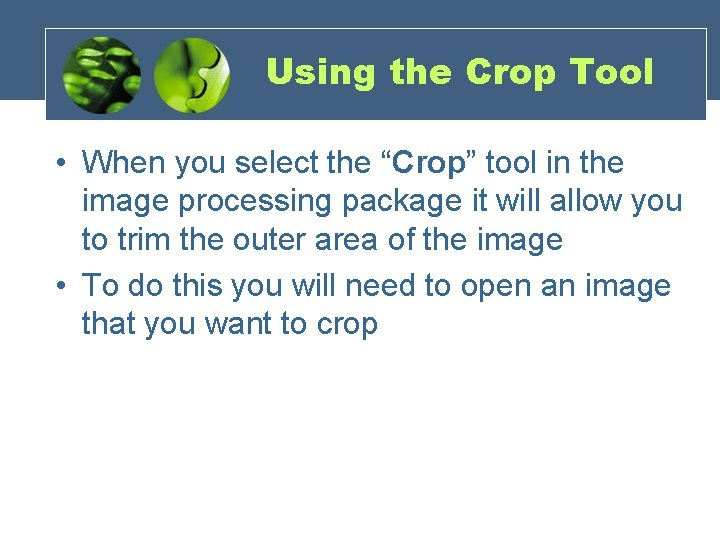 """Using the Crop Tool • When you select the """"Crop"""" tool in the image"""