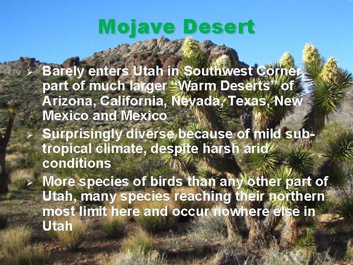 Mojave Desert Ø Ø Ø Barely enters Utah in Southwest Corner, part of much