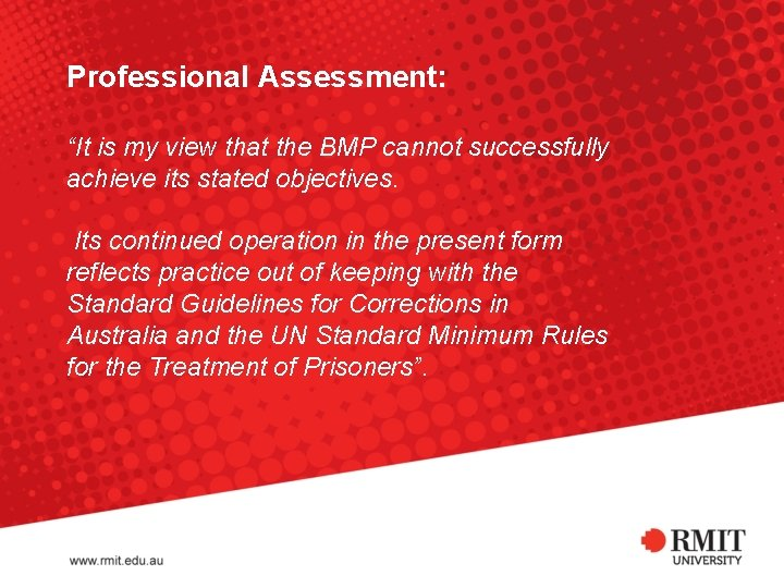 """Professional Assessment: """"It is my view that the BMP cannot successfully achieve its stated"""
