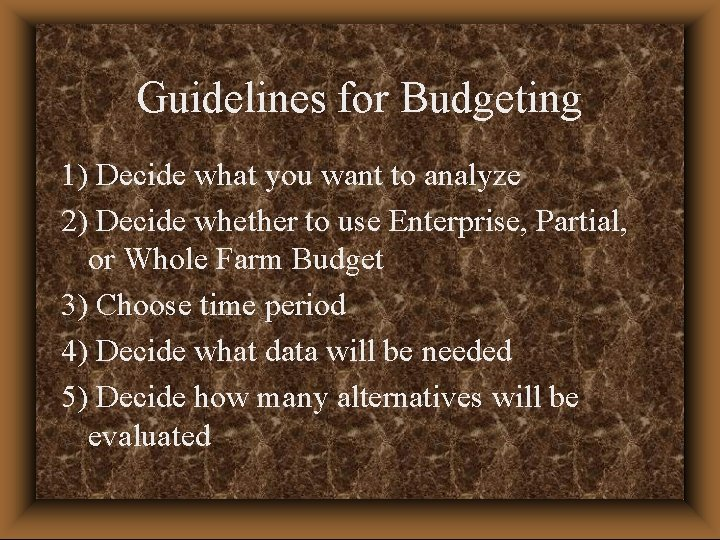 Guidelines for Budgeting 1) Decide what you want to analyze 2) Decide whether to