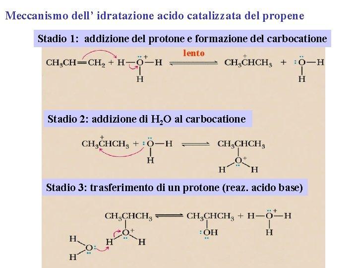 Meccanismo dell' idratazione acido catalizzata del propene Stadio 1: addizione del protone e formazione