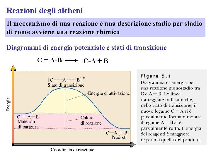Reazioni degli alcheni Il meccanismo di una reazione è una descrizione stadio per stadio