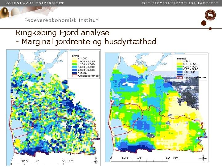 Ringkøbing Fjord analyse - Marginal jordrente og husdyrtæthed